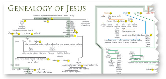 Sample: Genealogy of Jesus Diagram