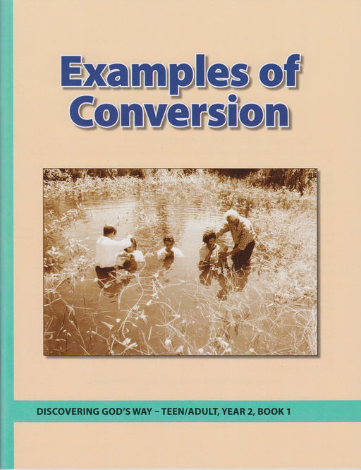 Examples of Conversion (Teen/Adult 2:1)