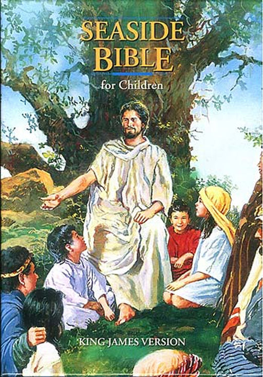 KJV Seaside Bible for Children