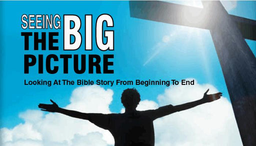 Seeing The Big Picture of the Bible Flip Chart