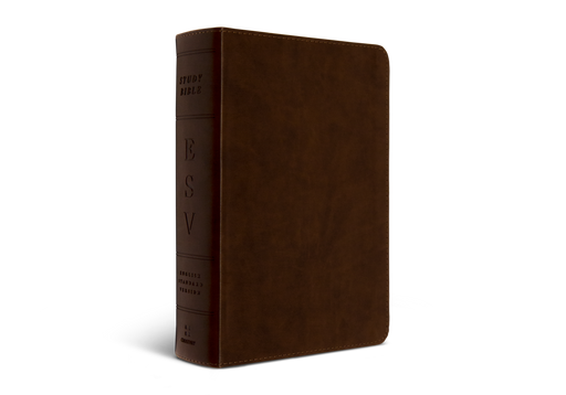 ESV Study Bible Personal Size Brown TruTone