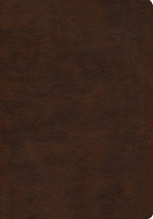 NASB 2020 Large Print Ultrathin Reference Bible Brown Leathertex
