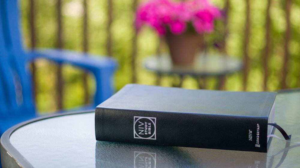 NIV Study Bible - Black Bonded Leather, Indexed