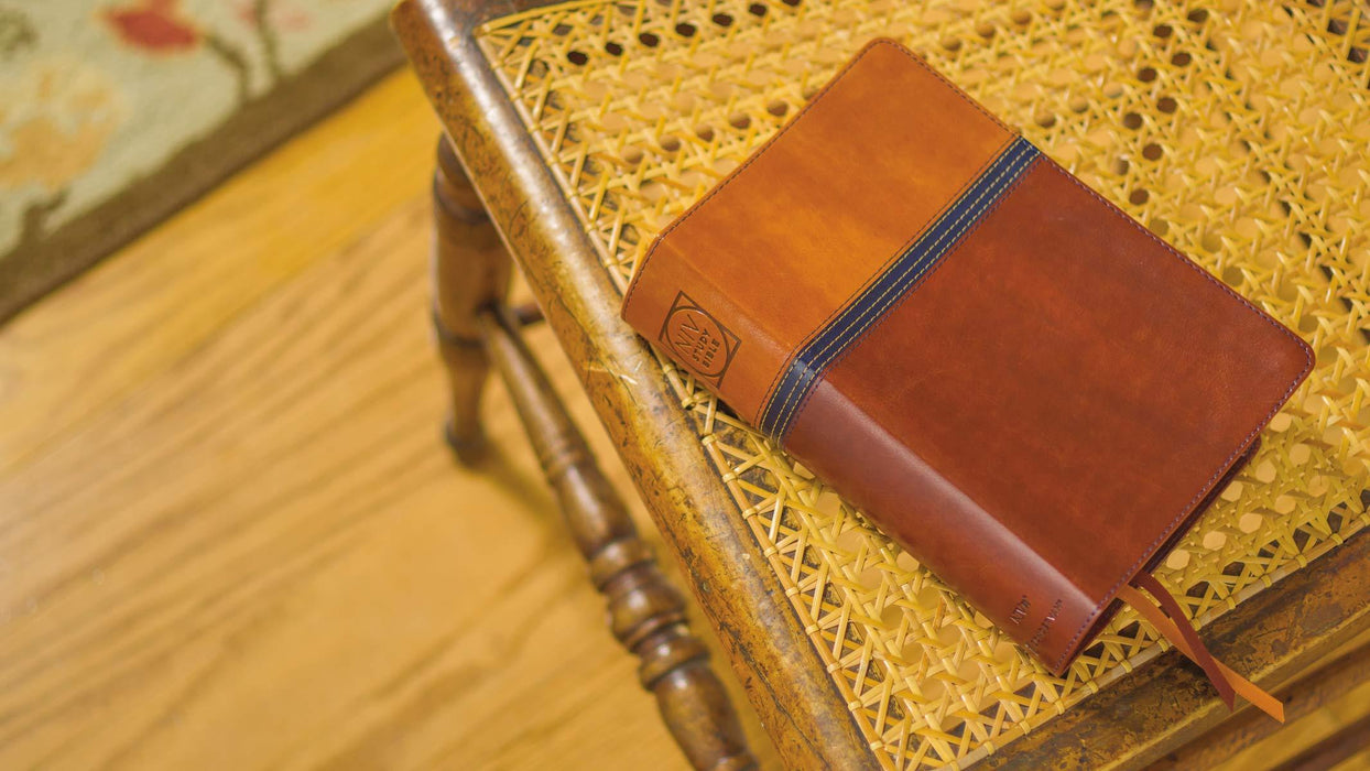 NIV Zondervan Study Bible - Personal Size - Brown/Blue DuoTone, Indexed