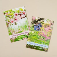 Boxed Cards - Spring Time - Get Well