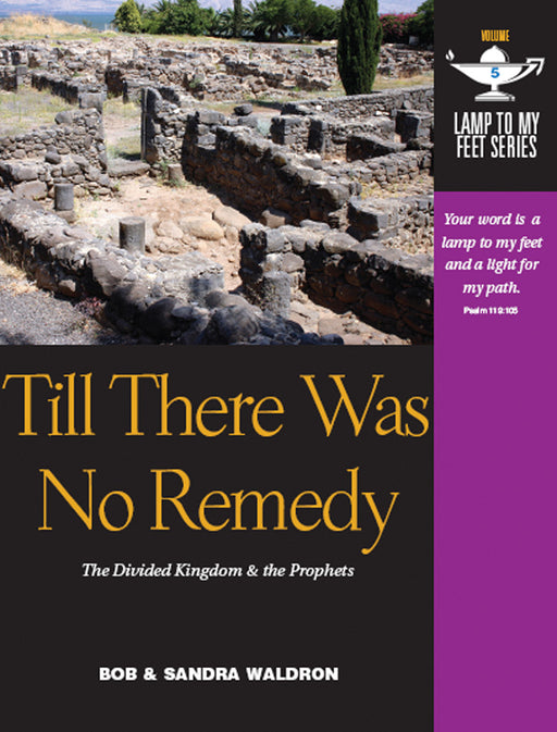Till There Was No Remedy (Lamp to My Feet Book 5)