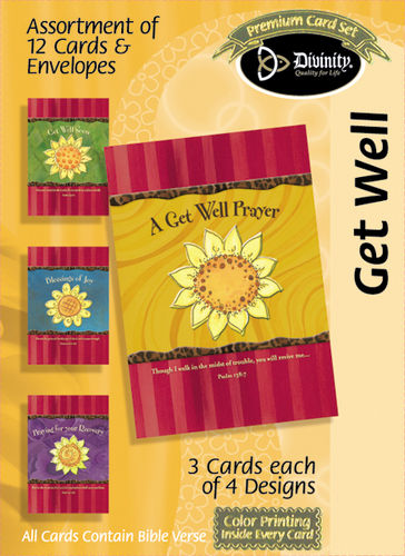 Boxed Cards - Daisies - Get Well