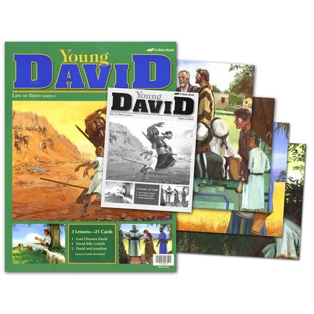 Young David (Life of David Series 1) - A Beka Flash-A-Cards