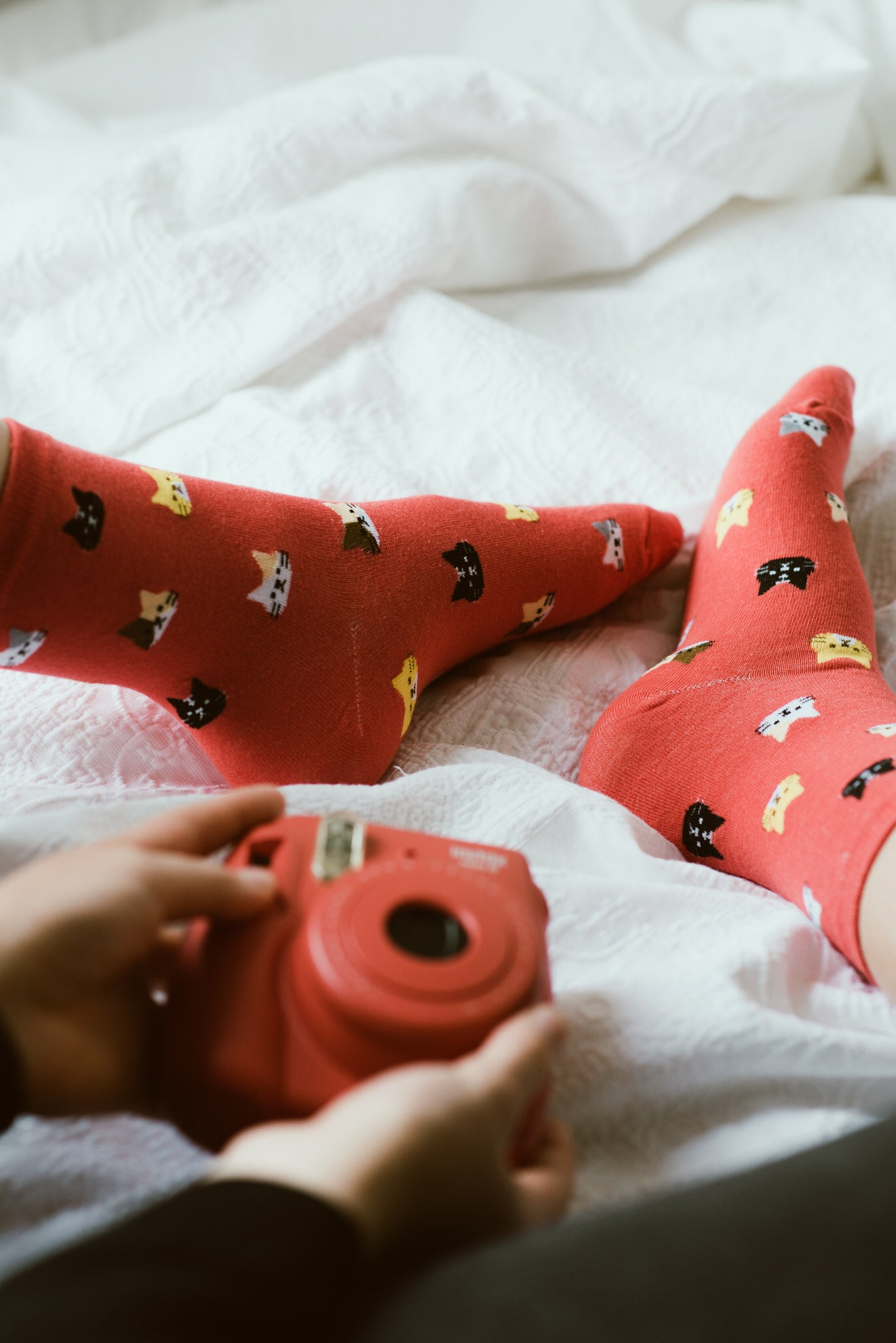 Cat Socks Red
