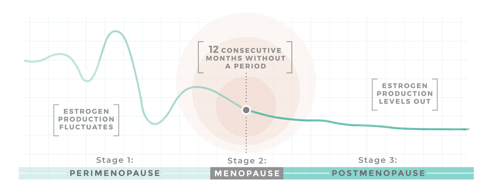 The Stages of Menopause