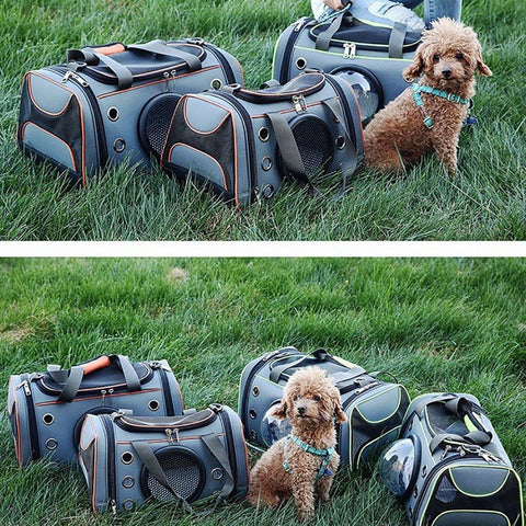 Pet Airport Bag with a View