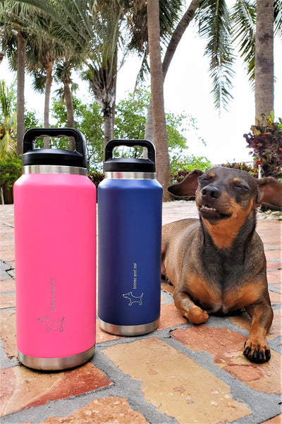 Twin-Pack Mastiff 36oz Bottles with Screw Cap