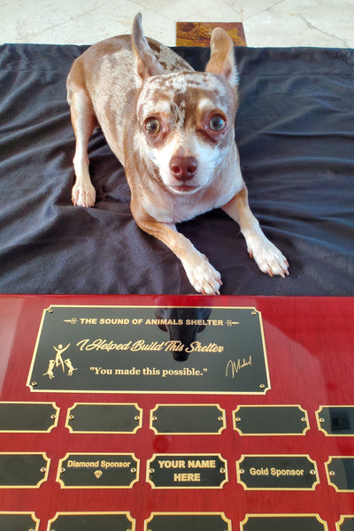 GOLD SPONSOR PLAQUE (The Sound of Animals)