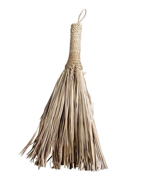 NEW Tine K Home Broom