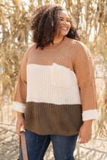 Three Times The Color Sweater in Toffee Combo