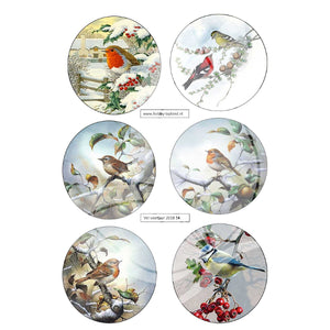 Robin & other Birds Topper Sheet