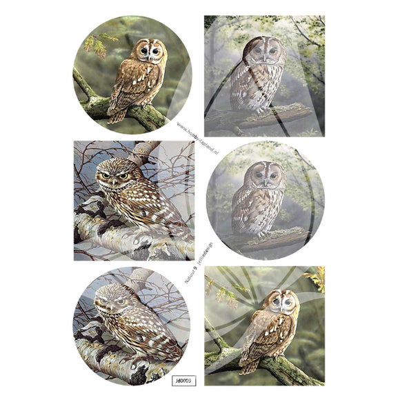 Owls 2 Topper Sheet