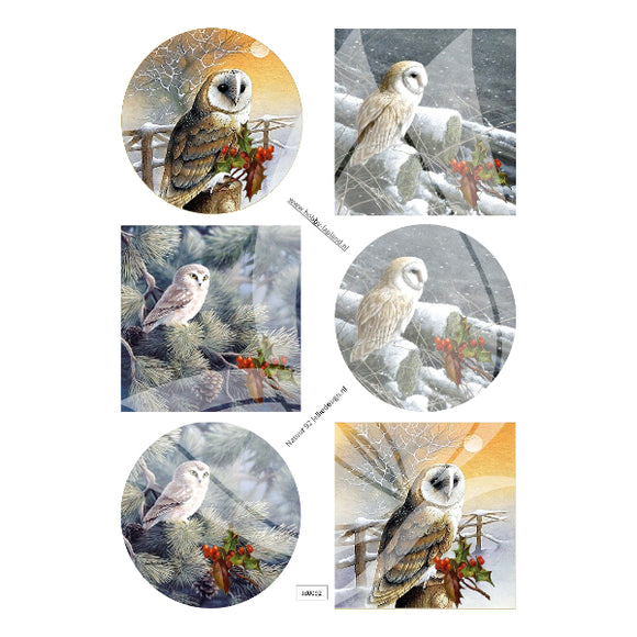 Barn Owls Topper Sheet