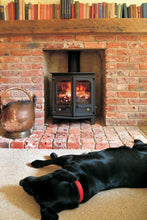 Load image into Gallery viewer, Charnwood Country 6 Wood Burning Fire Freestanding Angled Double Door Dog Warming by fire books on mantlepiece in Brick Fireplace