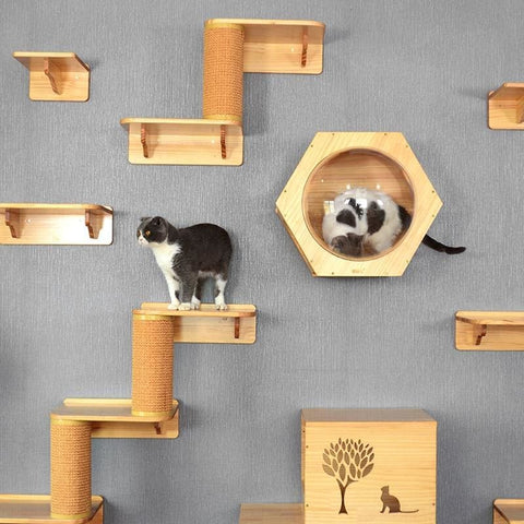 Cat Jumping Platform Nest Hanging Wall Space - Furniture & Scratchers