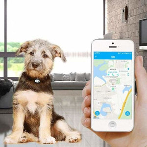 Dog Microchip GPS Tracker Monitor - Waterproof