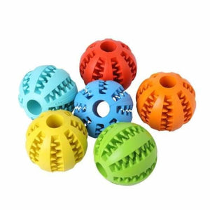 Funny Interactive Elastic Ball For Pet - Dog Toys - funny-interactive-elastic-ball-for-pet