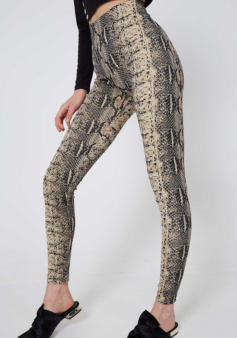 Multi High Waist Snake Skin Leggings