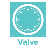 valve will get the gas out of the bag but will not let any external vapor or gas in. Valve are used by coffee industry
