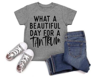 Beautiful Day For A Tantrum Shirt
