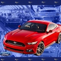 Ford Mustang Panel