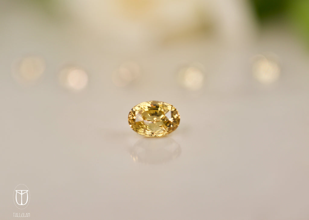 GOLDEN ZIRCON