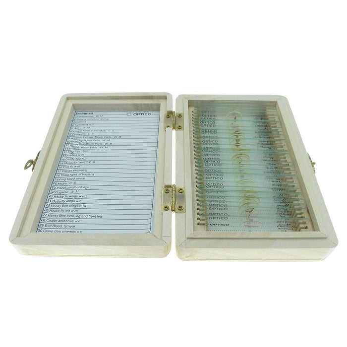 Zoology Prepared Glass Microscope Slides Set of 30