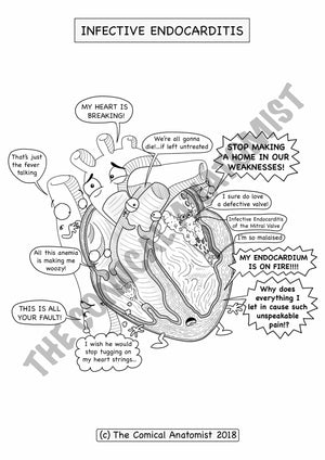 Infective Endocarditis Coloring Page