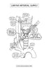 Larynx Arterial Supply Coloring & Activity Page