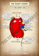 Derpy Kidney A4 Printable Poster
