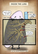Inside the Lung A4 Printable Poster