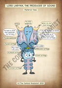 Posterior View of the Larynx A4 Printable Poster