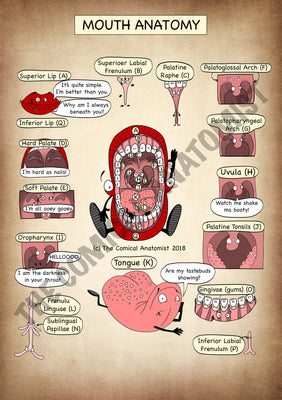 The Mouth A4 High Resolution PDF Digital Download