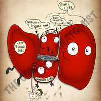 Postero-Inferior Surface of the Liver A4 Printable Poster