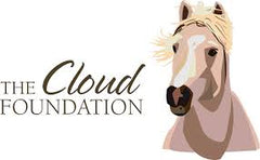 Cloud Foundation Logo