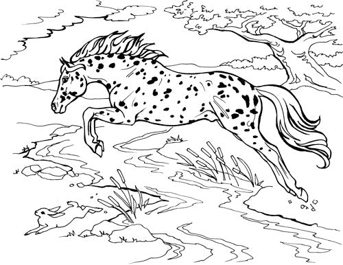- Horse Coloring Pages Www.tuningintomom.com