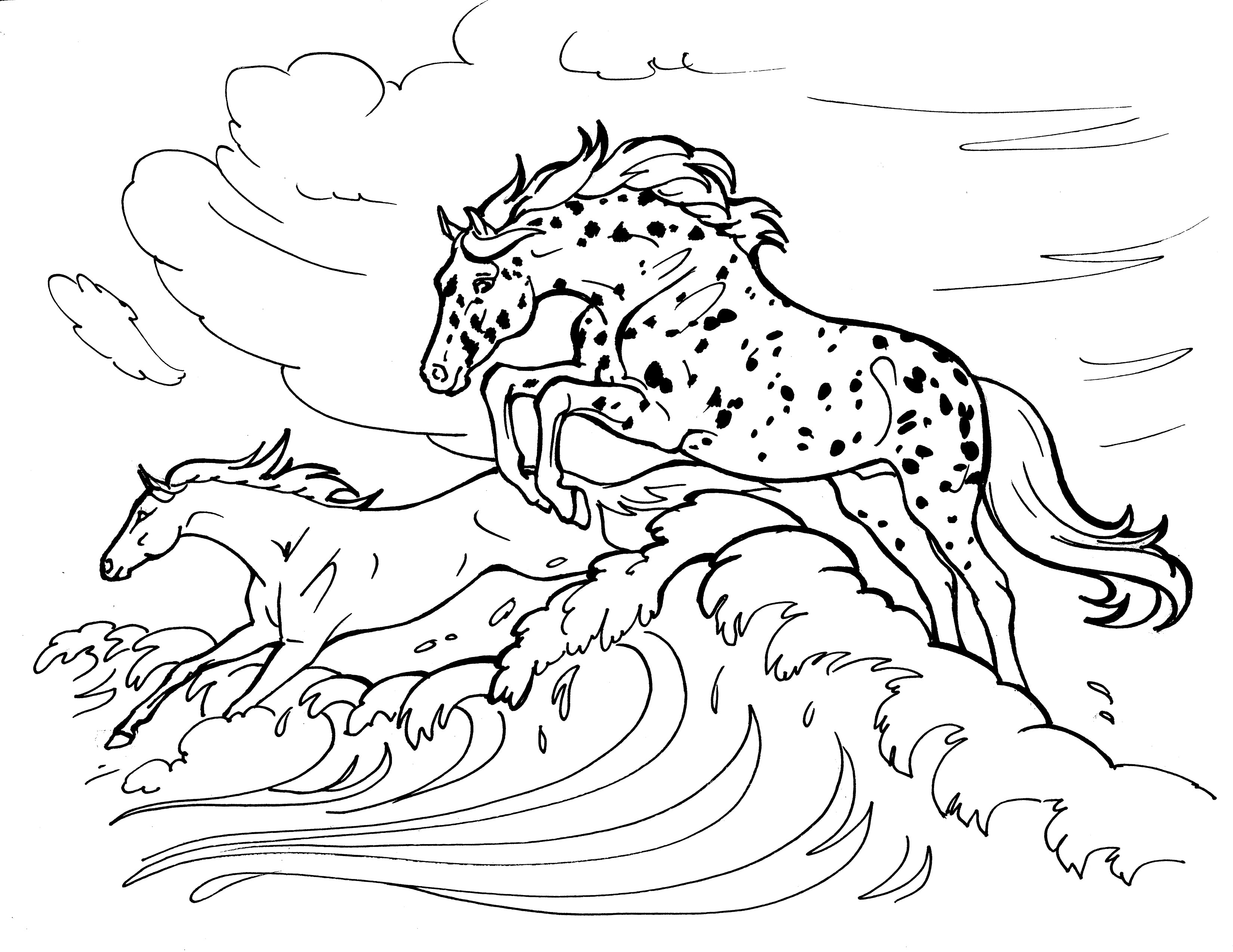 16 Best Equestrian Coloring Books images | Coloring books ... | 2550x3300