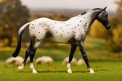 Appaloosa Model Breyer