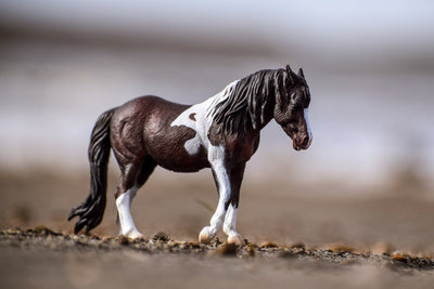 Bay Dartmoor Hill Mare Model Breyer