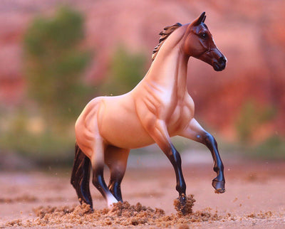 Bay Roan Australian Stock Horse Model Breyer
