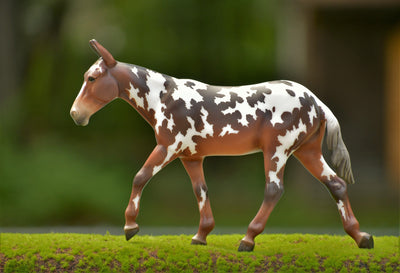 Buckeye Model Breyer