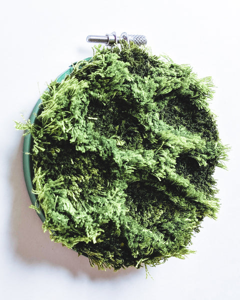Moss Study no. 3 Original Art - 4 in. hoop