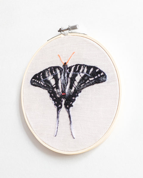 Zebra Swallowtail Butterfly no. 1 - Wool Felted Butterfly Original Art - 6 inch hoop