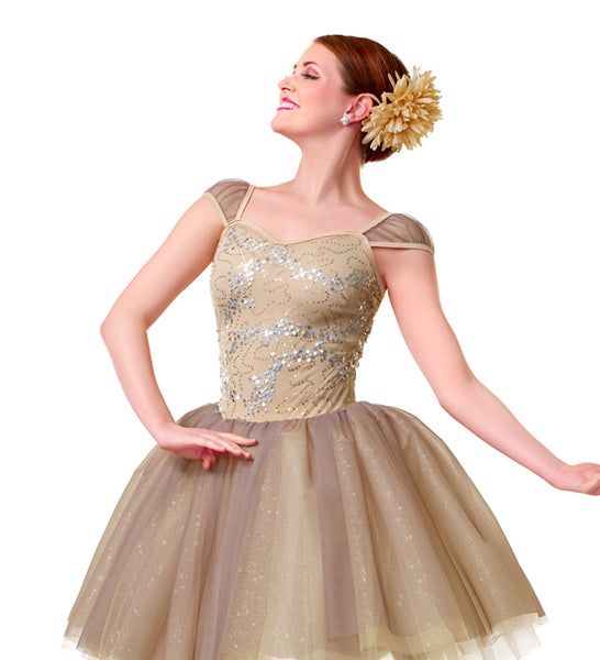 C251 Perfect Night - Ballet, Online Dance Costumes