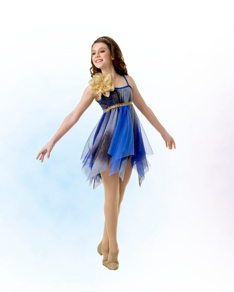 E690 Basket of Gold - Contemporary, Online Dance Costumes